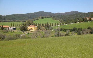 Cerchi dei terreni agricoli in vendita in Toscana?