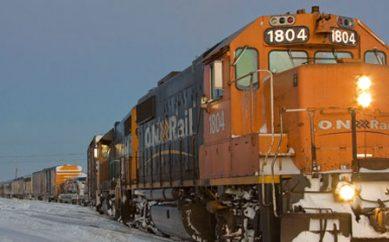 Viaggi in Canada, Polar Bear Express