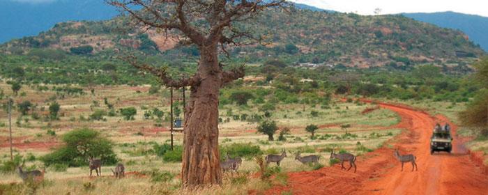 viaggi 4x4 in africa