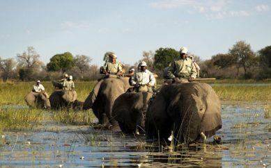 Percorsi in selfdrive in africa australe