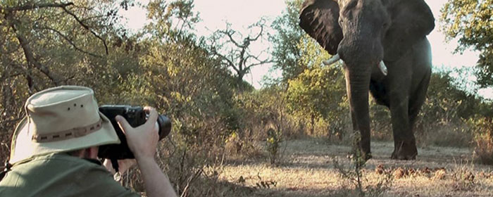 safari africa vacanze per famiglie