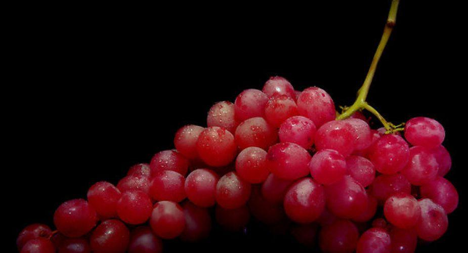 Il resveratrolo, un aiuto per la longevità