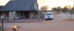 safari in botswana kgalagadi