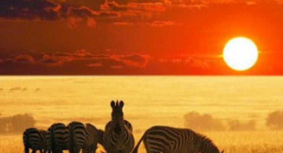 africa_travel_revolution