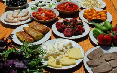 Dieta e alimentazione: imparare dai migliori