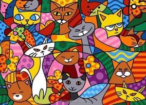merceria_online_gatti-colorati