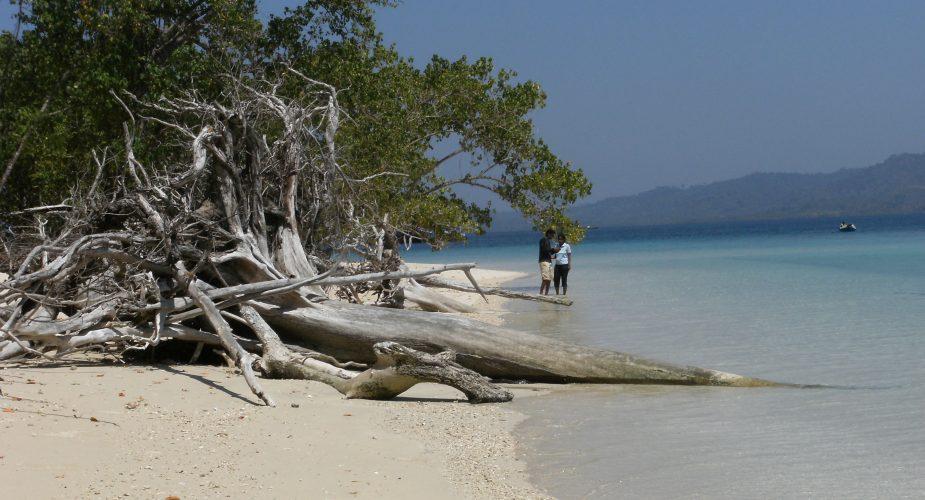 Viaggi India meridionale: il sentiero delle isole