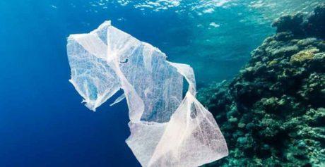 M5S: 'Ripulire le spiagge dalla plastica: inizia la nostra battaglia al Parlamento europeo'